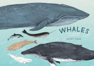 Image of Whales : An Illustrated Celebration
