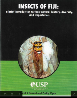 Image of Insects Of Fiji