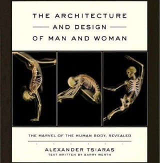 Image of Architecture & Design Of Man & Woman The Marvel Of The Humanbody Revealed