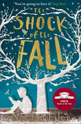 Image of Shock Of The Fall