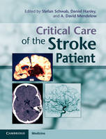 Image of Critical Care Of The Stroke Patient