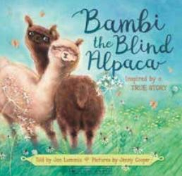Image of Bambi The Blind Alpaca