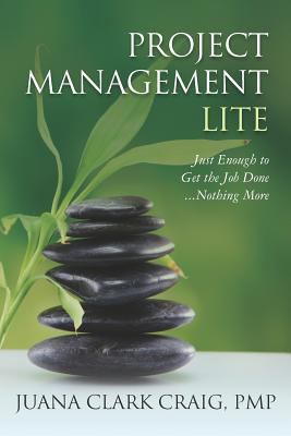 Image of Project Management Lite : Just Enough To Get The Job Done Nothing More