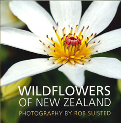 Image of Wildflowers Of New Zealand