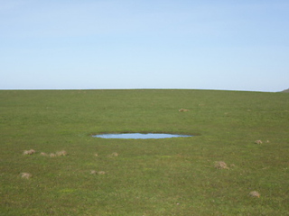 Image of Hole Slope Point By David Straight : Postcard