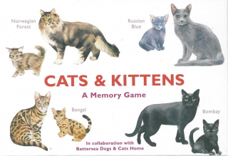 Image of Cats And Kittens : A Memory Game