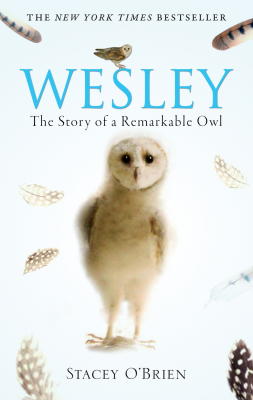 Image of Wesley The Owl The Remarkable Love Story Of An Owl