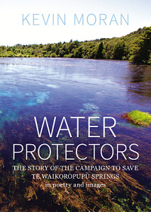 Image of Water Protectors : The Story Of The Campaign To Save Te Waikoropupu Springs : In Poetry And Images