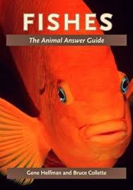 Image of Fishes : The Animal Answer Guide