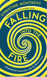 Image of Falling Into The Fire : A Psychiatrist's Encounters With Themind In Crisis