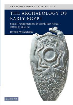 Image of Archaeology Of Early Egypt : Social Transformations In Northeast Africa : 10000 To 2650 Bc