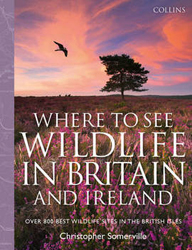 Image of Where To See Wildlife In Britain And Ireland : Over 800 Bestwildlife Sites In The British Isles