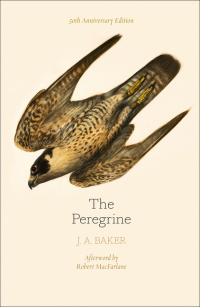 Image of Peregrine : 50th Anniversary Edition