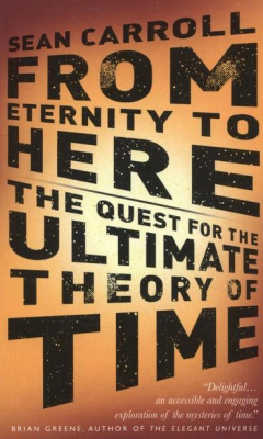 From Etenity To Here : The Quest For The Ultimate Theory Of Time