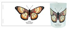 Image of Monarch Butterfly Tealight Flatpack : Greeting Card