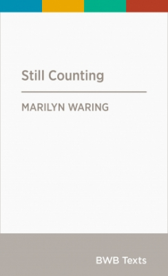 Still Counting : Wellbeing Women's Work And Policy-making