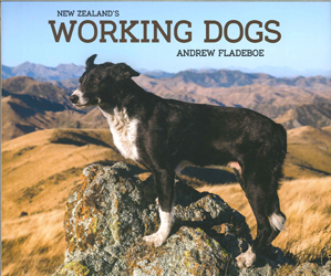 Image of New Zealand's Working Dogs