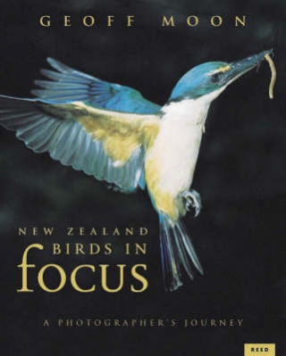 Image of New Zealand Birds In Focus : A Photographer's Journey