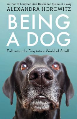 Being A Dog Following The Dog Into A World Of Smell