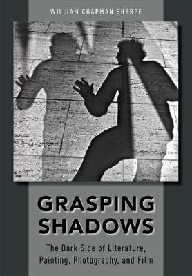 Image of Grasping Shadows : The Dark Side Of Literature Painting Photography And Film