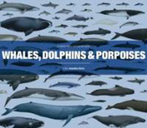 Image of Whales Dolphins & Porpoises : A Natural History And Species Guide