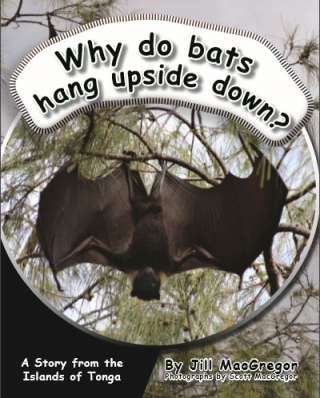 Image of Why Do Bats Hang Upside Down : A Story From The Islands Of Tonga