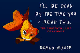 Image of I'll Be Dead By The Time You Read This : The Existential Life Of Animals