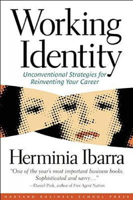 Image of Working Identity : Unconventional Strategies For Reinventingyour Career