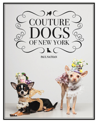 Image of Couture Dogs Of New York