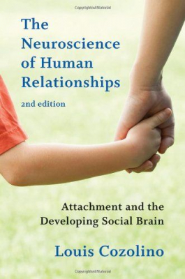 Image of Neuroscience Of Human Relationships Attachment & The Developing Social Brain