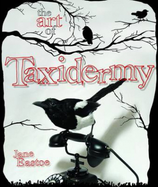 Image of Art Of Taxidermy