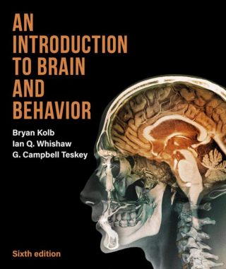 Image of An Introduction To Brain And Behavior