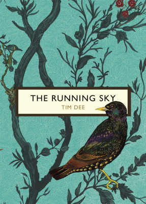 Image of Running Sky : A Birdwatching Life : The Birds And The Bees