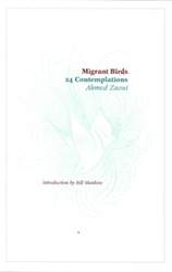 Image of Migrant Birds 24 Contemplations