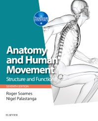 Image of Anatomy And Human Movement : Structure And Function
