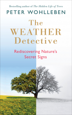 Image of The Weather Detective : Rediscovering Nature's Secret Signs
