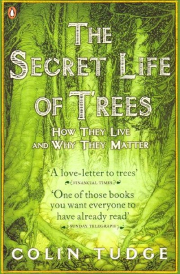 Image of The Secret Life Of Trees : How They Live And Why They Matter