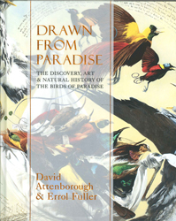 Image of Drawn From Paradise : The Discovery Art And Natural History Of The Birds Of Paradise
