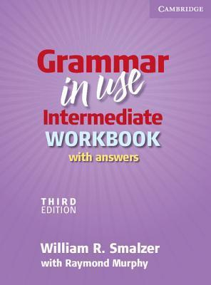 Grammar In Use American English Intermediate Workbook With