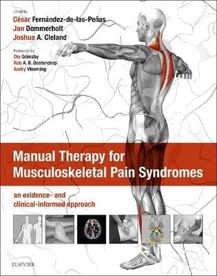 Image of Manual Therapy For Musculoskeletal Pain Syndromes An Evidence And Clinical Informed Approach